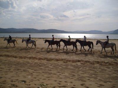 Centro de Equitacion Regaton