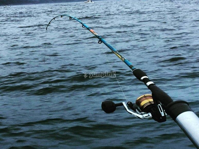 带浮标的钓鱼