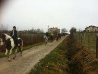 caballos e ingles