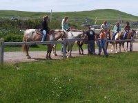 莱里达骑马游览