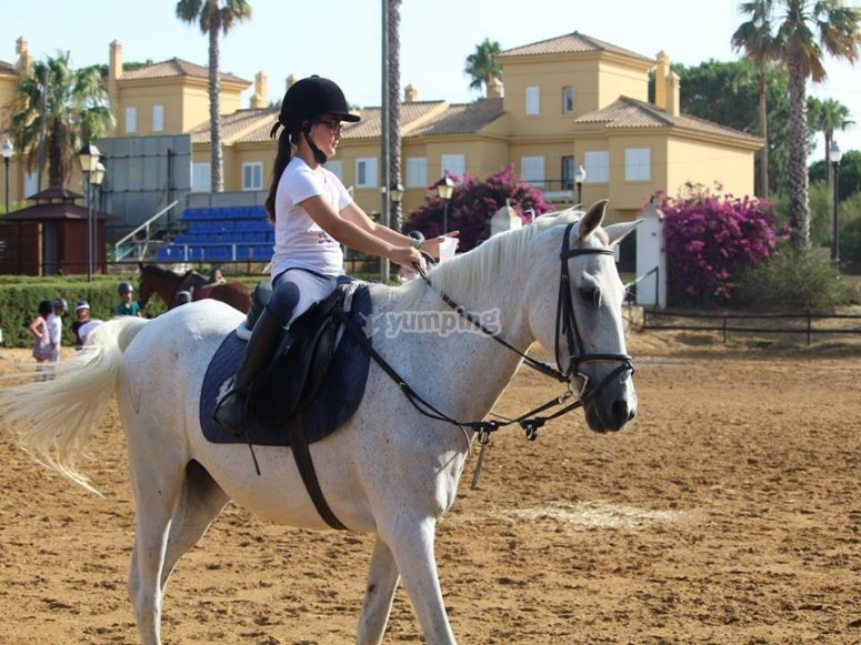 Horse class session