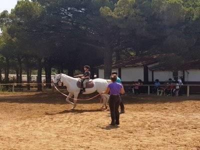 Clases de equitación en Cádiz iniciación 30 min