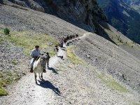 Amazing routes on horseback