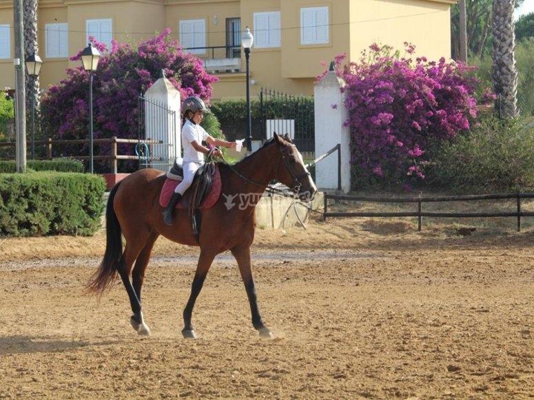 A caballo en el picadero