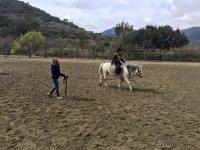 盛装舞步班与马