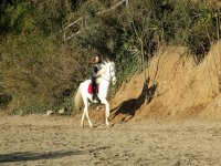 在沙地上骑马