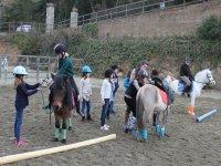 学习与小马一起骑
