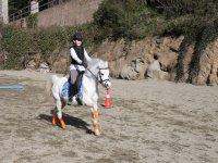 在小马中骑马