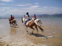 Horse ride tour at the beach