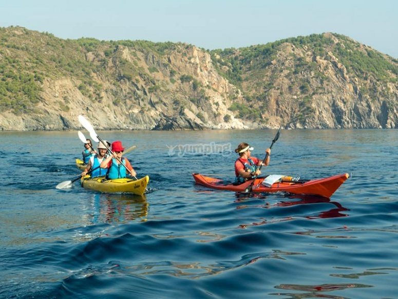 Paseo en kayak por Aiguamolls