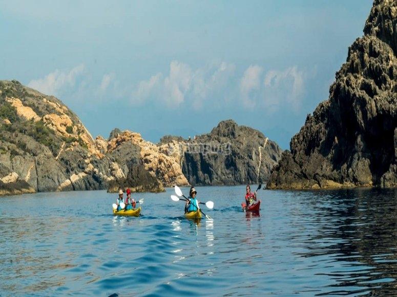 Recorrer Aiguamolls en kayak