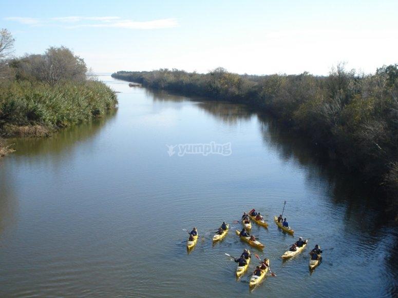 Acompáñanos en un relajante paseo en kayak