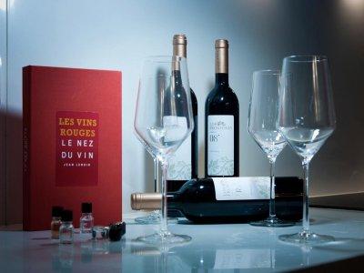 Winery Visit+Vine Tasting Course in Ronda