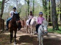 Paseo con caballos y ponys