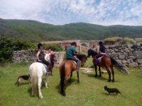 Grupo a caballo con los perritos