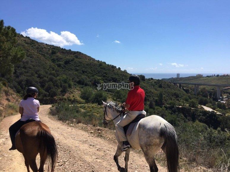 Paseo a caballo en la Costa del Sol