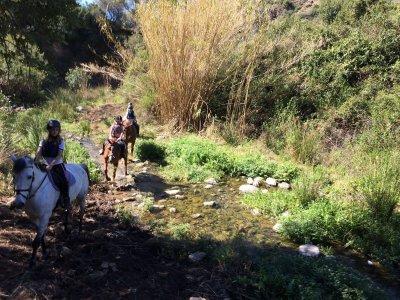 Ruta a caballo de 60 min en la Costa del Sol