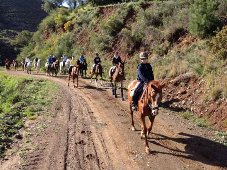 Horse riding tour in Costa del Sol