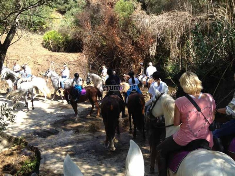 Horse riding tour in Marbella