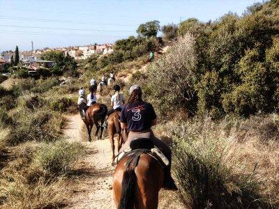 Ruta a Caballo por Marbella 2 horas
