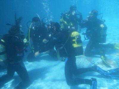官方课程PADI开放水域潜水员costamarbellí