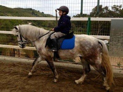 45 min de clase de equitación en grupo, Marbella
