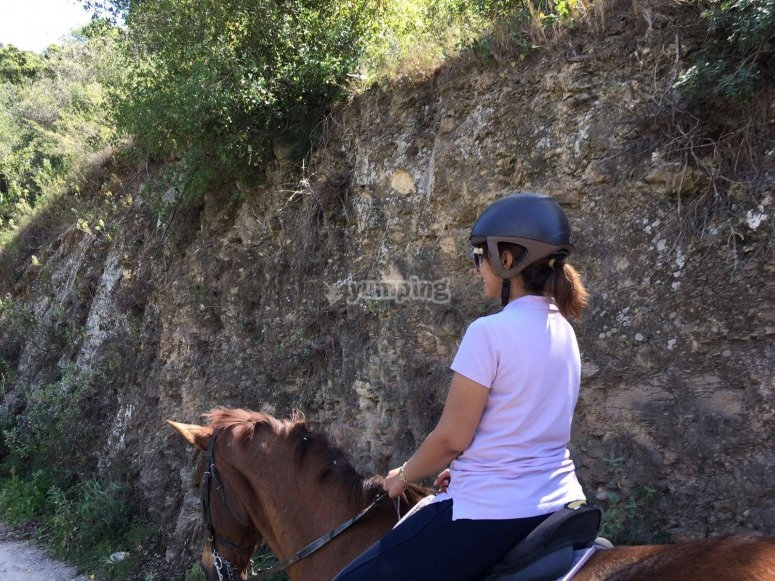Getting on the horse