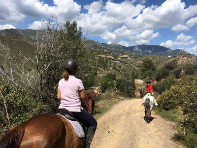 Buono 10 lezioni di equitazione di gruppo, Malaga