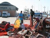 Pescadores en la lonja
