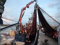 Barco pesquero en el puerto