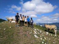 En lo alto del monte con las vacas