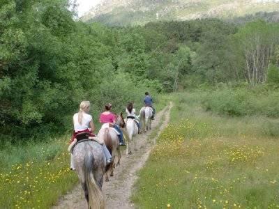 Ruta a caballo por la Sierra de Gredos, 1 hora 30