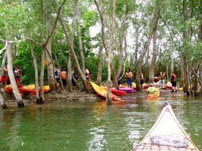 在埃布罗大人口的皮划艇路线