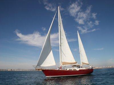 4小时在葡萄酒帆船,马略卡岛