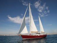 帆船马洛卡