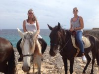 At the beach with the horses