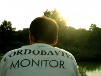 Monitor en Sotos albolafia