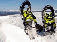 在内华达山脉雪鞋健行步道雪鞋