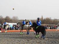 Horseball match