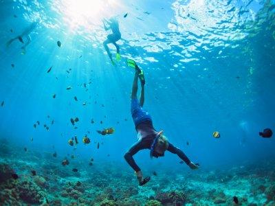 Curso de buceo Advanced Open Water Diver Murcia