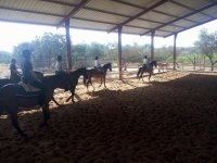 Horseback riding lesson