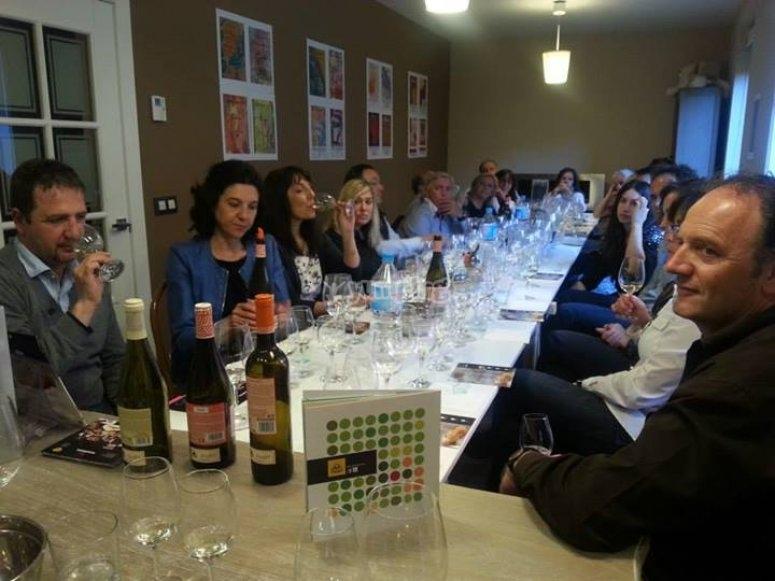 Curso de degustación de vinos