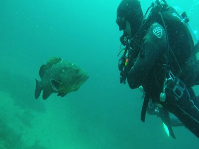 2 stars diving course in Cape Palos