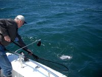 Pesca desde embarcación