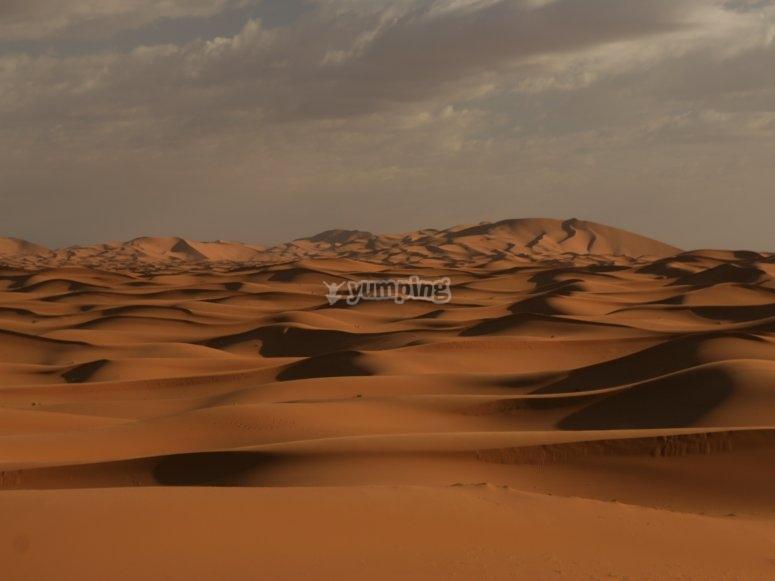 El desierto: todo tuyo