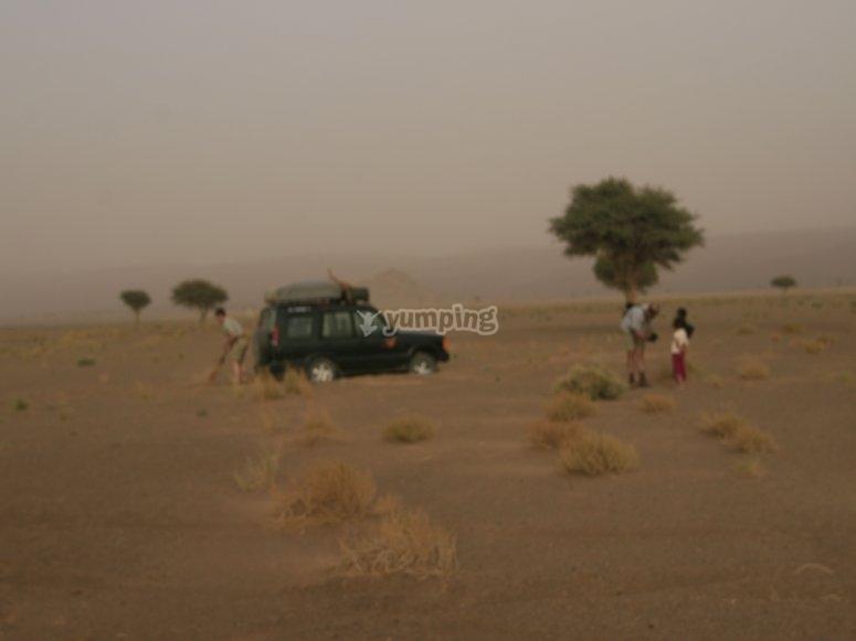 La sabana marroquí