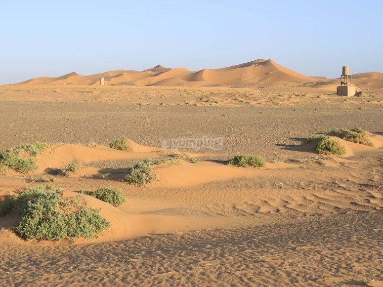 A lo lejos el Sahara (Erg Chebbi)