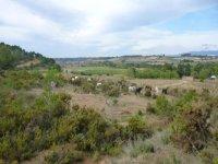 自然萝拉欧洲最大的围场-999