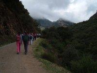 Excursion en dia nublado