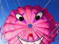 Paracaidas标志海滩滑翔伞滑翔伞